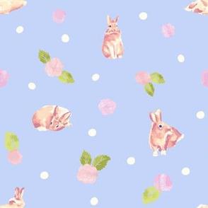 Sweet bunny on blue