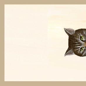 SP towel stripe cat