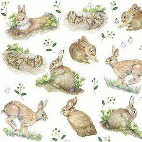 Bunny Rabbit Toile