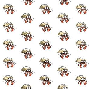 Harold the Hermit Crab