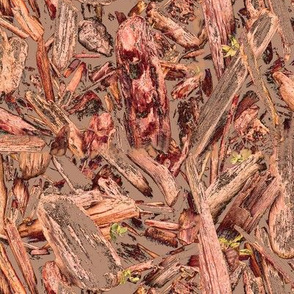 Driftwood in mud orange