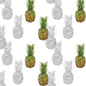 pineapple (two tone)