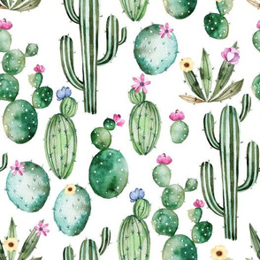 """10"""" Tropical Hand drawn watercolor Cacti on white"""