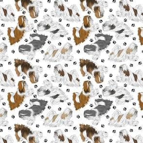 Trotting Lhasa Apso and paw prints B - white