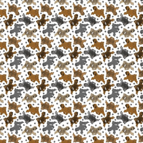Trotting Tibetan Terriers and paw prints - tiny white