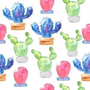 Watercolor Galaxy Cacti