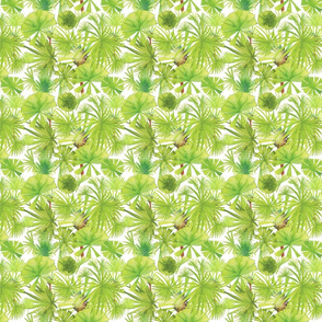 Tropical Fronds