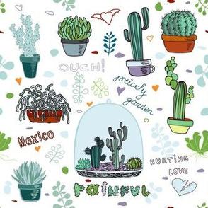 Cactus, Mexico