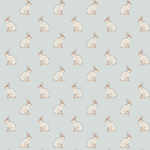 Mountain hares on pale blue