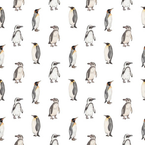 Penguin pattern on white