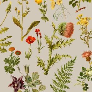 vintage wildflowers -khaki