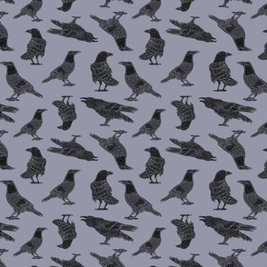 Crows on Gray