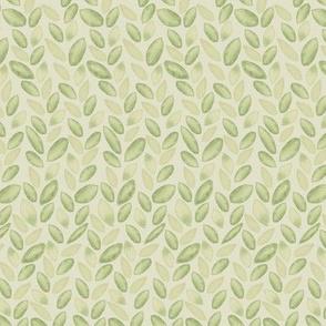 Soft Green Leaves on C7C59B