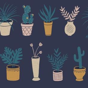 Potted Plants Dark