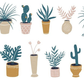 Potted Plants on White