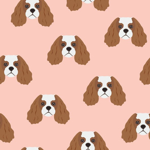 Cavalier King Dog Face Pattern - Pink Background