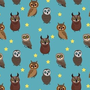 night time owls