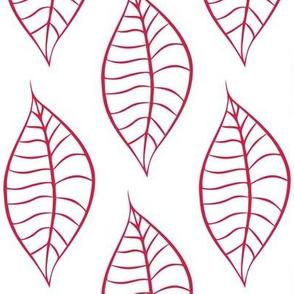 Geometric Geranium Red Leaves