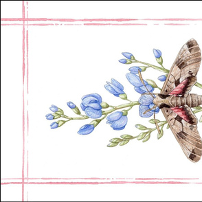 Tea Towel: Watercolor Moth