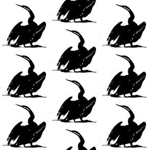 cormorant large b w