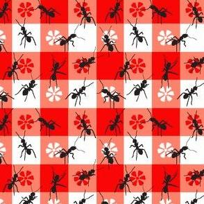Ants at the Picnic
