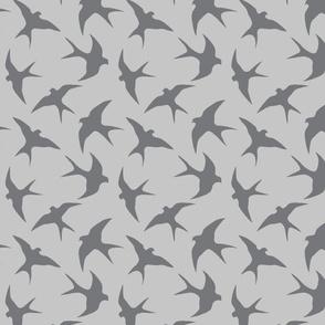 solid-swallows-grey-on-grey