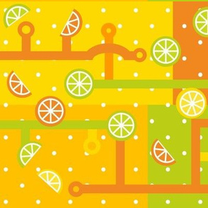 Citrus Circuits 101