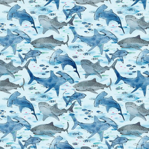 Swimming with Sharks xs (gray) - © Lucinda Wei