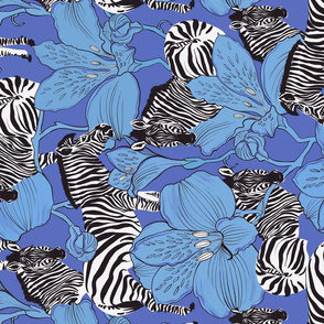 zebras blue rotate