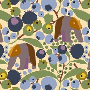 blueberry brown bear yellow