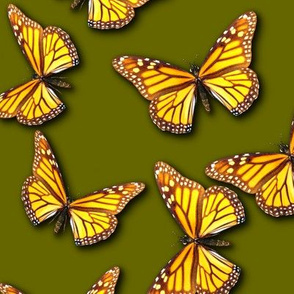 Bring on the Monarch Butterflies (Olive)