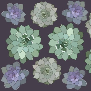 Stained Glass Succulents Plum