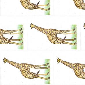 Natural Habitat - Giraffe