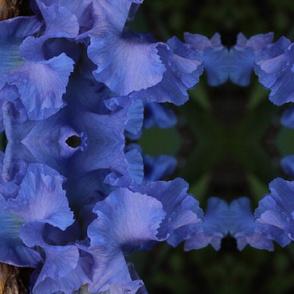 iris plaid largescale