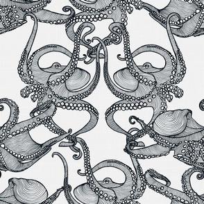 Cephalopod - Octopi smaller - Black&White