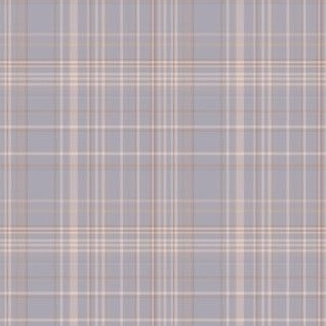 Beige and Blue Gray Plaid