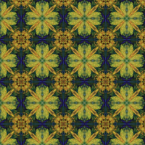 Pattern-76