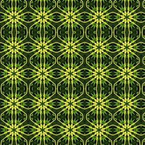 Pattern-79