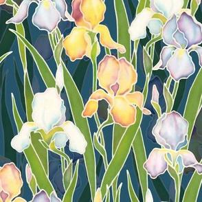 Night Irises