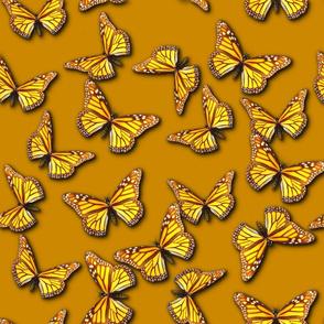 Bring on the Monarch Butterflies (Golden Orange)