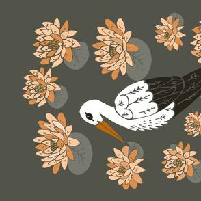 cicogna lily