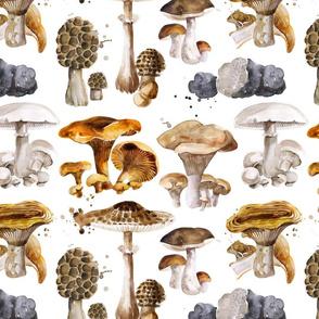 mushrooms cuts