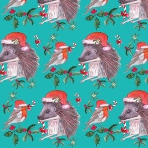 Christmas Hedgehog and robin santa christmas holiday