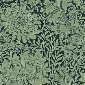 Chrysanthemum Loeb Green