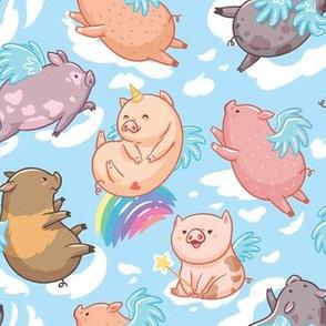 Mini Piggies in the sky