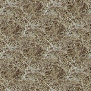 Birch Nest | Seamless Neutral Texture