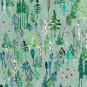 Noël Forest (sage) MED