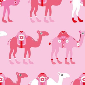 Colorful dromedary arabic summer oriental desert Camel parade pink JUMBO