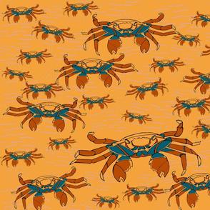 sally-crabs-walking