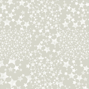 Beige/Warm Gray and White Star Pattern Wholecloth Cheater Quilt